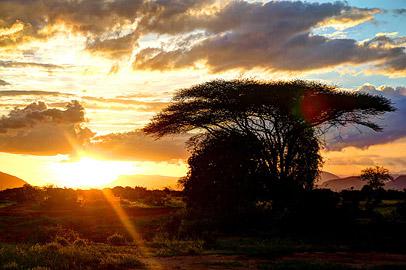 Fotoalbum von Malindi.info - Safari Tsavo/East und Amboseli Dezember 2012[ Foto 53 von 145 ]