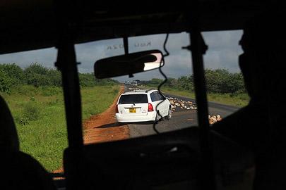Fotoalbum von Malindi.info - Safari Tsavo/East und Amboseli Dezember 2012[ Foto 61 von 145 ]