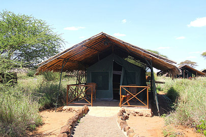 Fotoalbum von Malindi.info - Safari Tsavo/East und Amboseli Dezember 2012[ Foto 79 von 145 ]