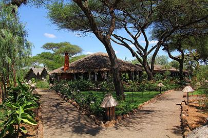 Fotoalbum von Malindi.info - Safari Tsavo/East und Amboseli Dezember 2012[ Foto 81 von 145 ]