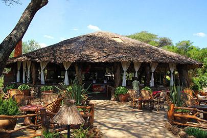 Fotoalbum von Malindi.info - Safari Tsavo/East und Amboseli Dezember 2012[ Foto 82 von 145 ]