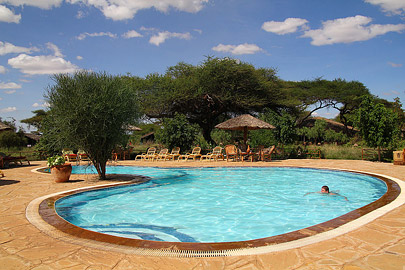 Fotoalbum von Malindi.info - Safari Tsavo/East und Amboseli Dezember 2012[ Foto 87 von 145 ]