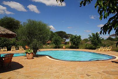 Fotoalbum von Malindi.info - Safari Tsavo/East und Amboseli Dezember 2012[ Foto 88 von 145 ]