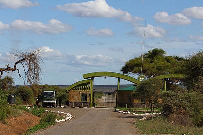 Fotoalbum von Malindi.info - Safari Tsavo/East und Amboseli Dezember 2012[ Foto 90 von 145 ]