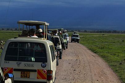 Fotoalbum von Malindi.info - Safari Tsavo/East und Amboseli Dezember 2012[ Foto 102 von 145 ]