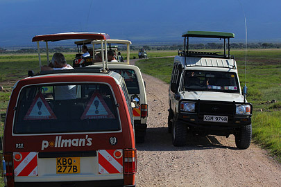 Fotoalbum von Malindi.info - Safari Tsavo/East und Amboseli Dezember 2012[ Foto 103 von 145 ]