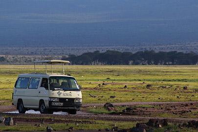 Fotoalbum von Malindi.info - Safari Tsavo/East und Amboseli Dezember 2012[ Foto 105 von 145 ]