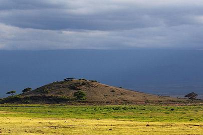 Fotoalbum von Malindi.info - Safari Tsavo/East und Amboseli Dezember 2012[ Foto 110 von 145 ]