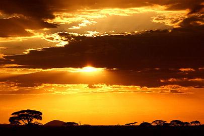 Fotoalbum von Malindi.info - Safari Tsavo/East und Amboseli Dezember 2012[ Foto 116 von 145 ]