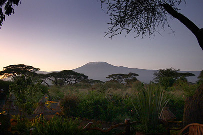 Fotoalbum von Malindi.info - Safari Tsavo/East und Amboseli Dezember 2012[ Foto 122 von 145 ]