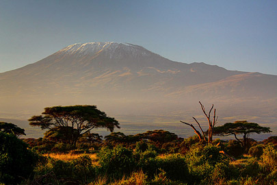 Fotoalbum von Malindi.info - Safari Tsavo/East und Amboseli Dezember 2012[ Foto 123 von 145 ]