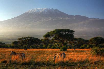 Fotoalbum von Malindi.info - Safari Tsavo/East und Amboseli Dezember 2012[ Foto 124 von 145 ]