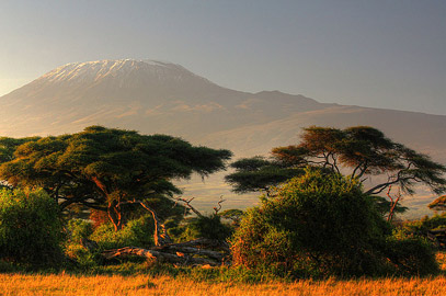 Fotoalbum von Malindi.info - Safari Tsavo/East und Amboseli Dezember 2012[ Foto 125 von 145 ]