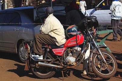 Fotoalbum von Malindi.info - Safari Tsavo/East und Amboseli Dezember 2012[ Foto 137 von 145 ]