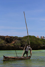 Fotoalbum von Malindi.info - Malindi, Watamu & Robinson Island März 2013[ Foto 7 von 70 ]