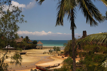 Fotoalbum von Malindi.info - Trip nach Zanzibar - September 2013[ Foto 1 von 212 ]