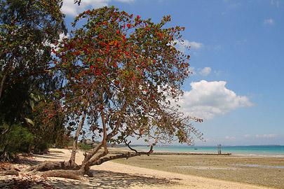 Fotoalbum von Malindi.info - Trip nach Zanzibar - September 2013[ Foto 9 von 212 ]