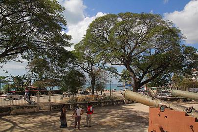 Fotoalbum von Malindi.info - Trip nach Zanzibar - September 2013[ Foto 99 von 212 ]