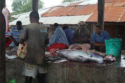 Fotoalbum von Malindi.info - Trip nach Zanzibar - September 2013[ Foto 130 von 212 ]
