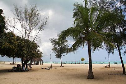 Fotoalbum von Malindi.info - Trip nach Zanzibar - September 2013[ Foto 152 von 212 ]