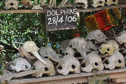 Fotoalbum von Malindi.info - Trip nach Zanzibar - September 2013[ Foto 181 von 212 ]