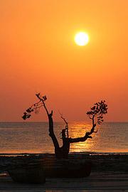 Fotoalbum von Malindi.info - Trip nach Zanzibar - September 2013[ Foto 197 von 212 ]