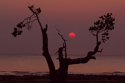Fotoalbum von Malindi.info - Trip nach Zanzibar - September 2013[ Foto 199 von 212 ]