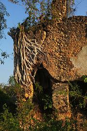 Fotoalbum von Malindi.info - Trip nach Zanzibar - September 2013[ Foto 202 von 212 ]