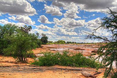 Fotoalbum von Malindi.info - Safari Tsavo East im April 2015[ Foto 21 von 66 ]