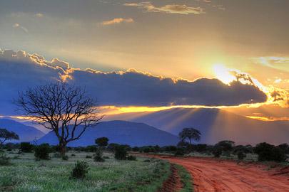 Fotoalbum von Malindi.info - Safari Tsavo East im April 2015[ Foto 47 von 66 ]