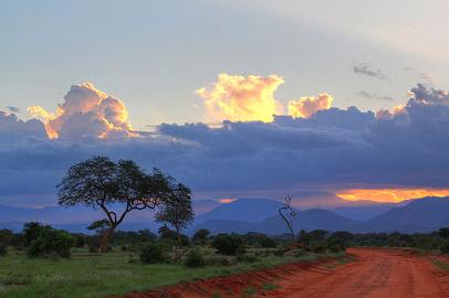 Fotoalbum von Malindi.info - Safari Tsavo East im April 2015[ Foto 48 von 66 ]