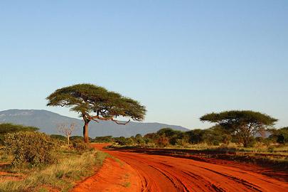 Fotoalbum von Malindi.info - Safari Tsavo East im April 2015[ Foto 50 von 66 ]