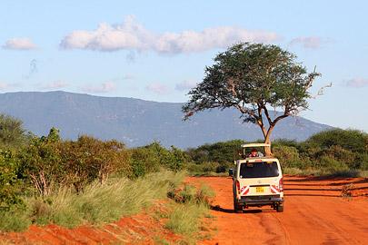 Fotoalbum von Malindi.info - Safari Tsavo East im April 2015[ Foto 55 von 66 ]