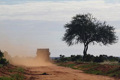 Fotoalbum von Malindi.info - Safari Tsavo East im April 2015[ Foto 58 von 66 ]