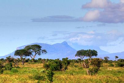 Fotoalbum von Malindi.info - Safari Tsavo East im April 2015[ Foto 59 von 66 ]