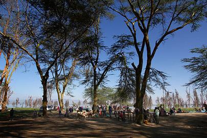 Fotoalbum von Malindi.info - Lakes Naivasha, Baringo & Nakuru 2016[ Foto 5 von 95 ]