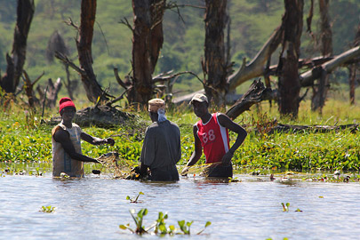 Fotoalbum von Malindi.info - Lakes Naivasha, Baringo & Nakuru 2016[ Foto 34 von 95 ]