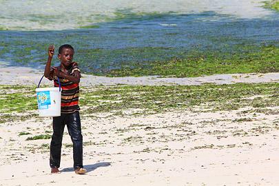 Fotoalbum von Malindi.info - Malindi Fotos vom März 2016[ Foto 84 von 130 ]