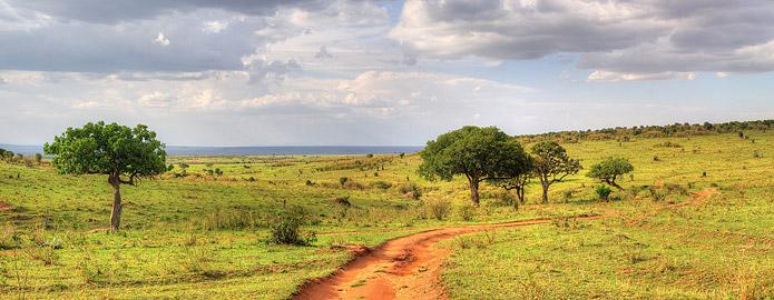 Fotoalbum von Malindi.info - 3 Tage Safari Maasai Mara 2017 [ Foto 60 von 104 ]