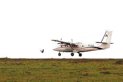 Fotoalbum von Malindi.info - 3 Tage Safari Maasai Mara 2017 [ Foto 77 von 104 ]