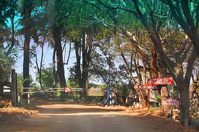 Fotoalbum von Malindi.info - 1 Tag und 1 Nacht in Taita Hills Salt Lick 2017[ Foto 2 von 44 ]