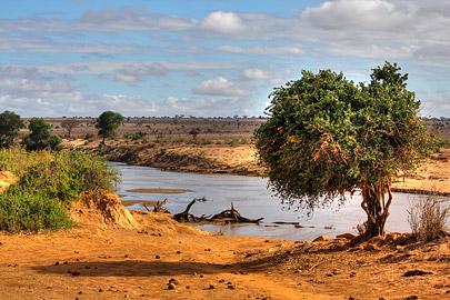 Fotoalbum von Malindi.info - Safari 2 Tage und 1 Nacht in Tsavo East 2019[ Foto 6 von 83 ]