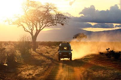 Fotoalbum von Malindi.info - Safari 2 Tage und 1 Nacht in Tsavo East 2019[ Foto 49 von 83 ]