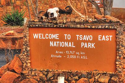 Fotoalbum von Malindi.info - Safari 2 Tage und 1 Nacht in Tsavo East 2019[ Foto 82 von 83 ]