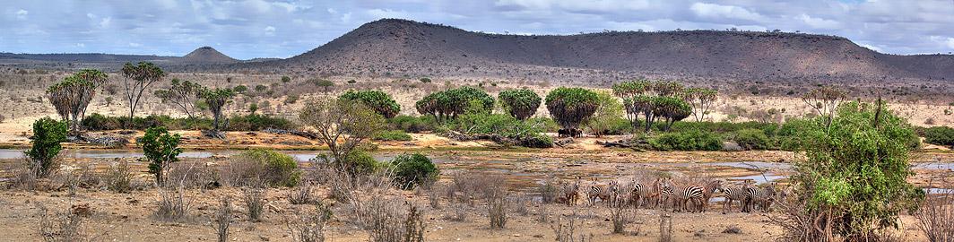 Fotoalbum von Malindi.info - Safari 2 Tage und 1 Nacht in Tsavo East 2019[ Foto 83 von 83 ]