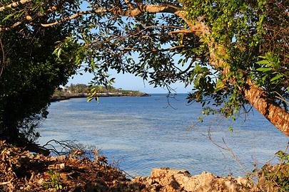 Fotoalbum von Malindi.info - Fotos von Malindi und Umgebung 10/2020[ Foto 9 von 79 ]