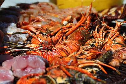 Fotoalbum von Malindi.info - Fotos von Malindi und Umgebung 10/2020[ Foto 21 von 79 ]