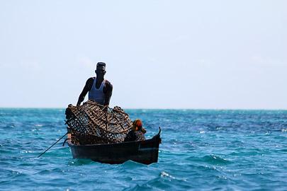 Fotoalbum von Malindi.info - Fotos von Malindi und Umgebung 10/2020[ Foto 27 von 79 ]
