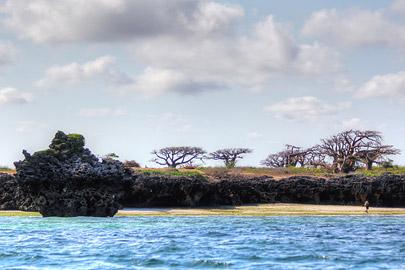 Fotoalbum von Malindi.info - Fotos von Malindi und Umgebung 10/2020[ Foto 30 von 79 ]