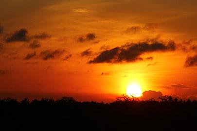 Fotoalbum von Malindi.info - Fotos von Malindi und Umgebung 10/2020[ Foto 40 von 79 ]